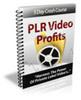 Thumbnail PLR Video Profits with PLR