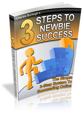 Product picture 3 Steps To Newbie Success-PLR