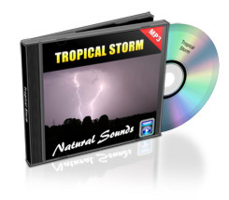 Product picture Tropical Storm mp3