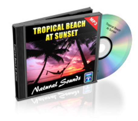 Product picture Tropical Beach At Sunset mp3